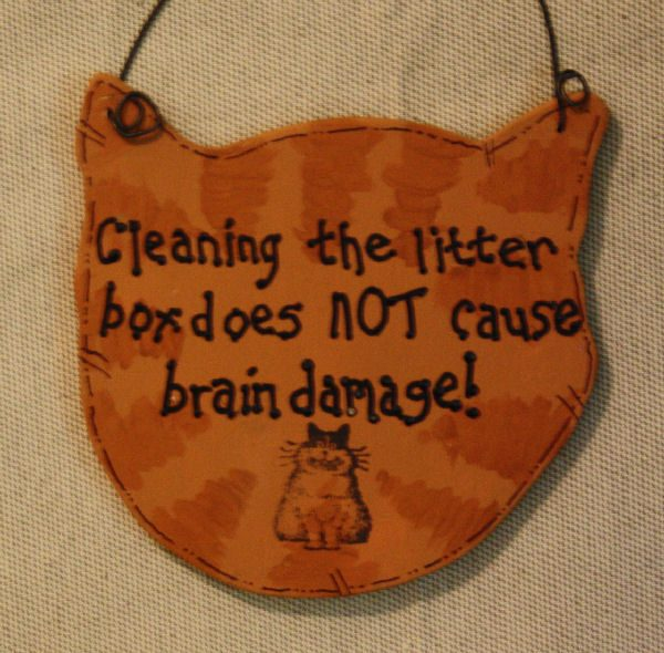 Cleaning the litter box does NOT cause brain damage!